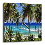 Cheap 3dRose dpp_173296_3 Tropical Day Scene with Swaying Palm Trees and Glimpses of Blue Ocean Wall Clock, 15 by 15-Inch