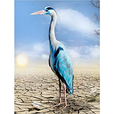 Paint by Number Kits - Sunlit Crane Bird 16x20 Inch Linen Canvas Paintworks - Digital Oil Painting Canvas Kits for Adults Children Kids Decorations Gifts (with Frame)