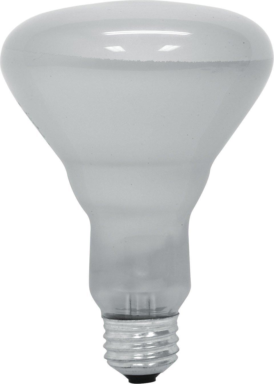 GE Lighting 65-Watt 610-Lumen R30 Floodlight Bulb, Soft White - 6 Pack