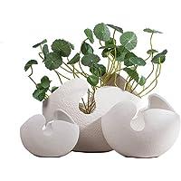 HTDZDX Decorazione Domestica Semplice Decorazione di Vaso in Ceramica Bianca Guscio d'uovo (Una Serie di 3)