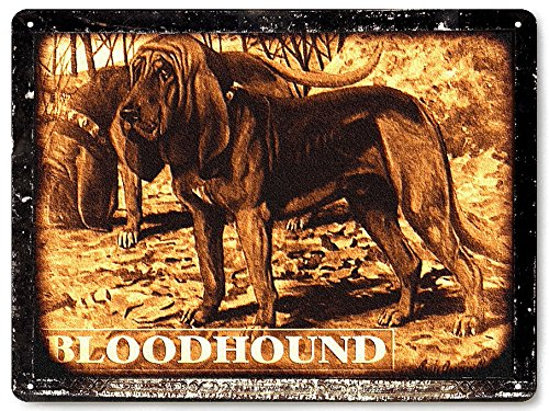 Hunting Dog Funny - Bloodhound hunting dog metal sign / funny pet shop vintage style wall decor art 321