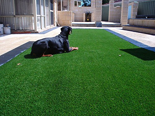 Synturfmats Artificial Grass For Dog Decorative Synthetic