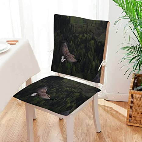 Amazon.com: Mikihome – Cojín de asiento The Beauty of ...