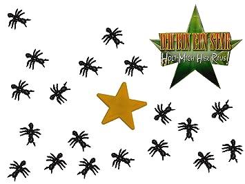 Unbekannt Deko Stern Mit 25 Ameisen Ich Bin Ein Star
