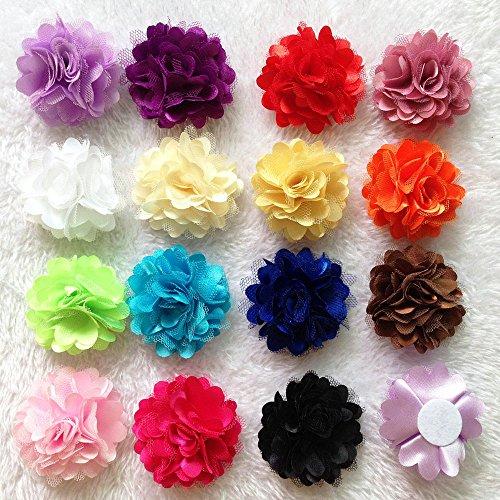 15 Color 2