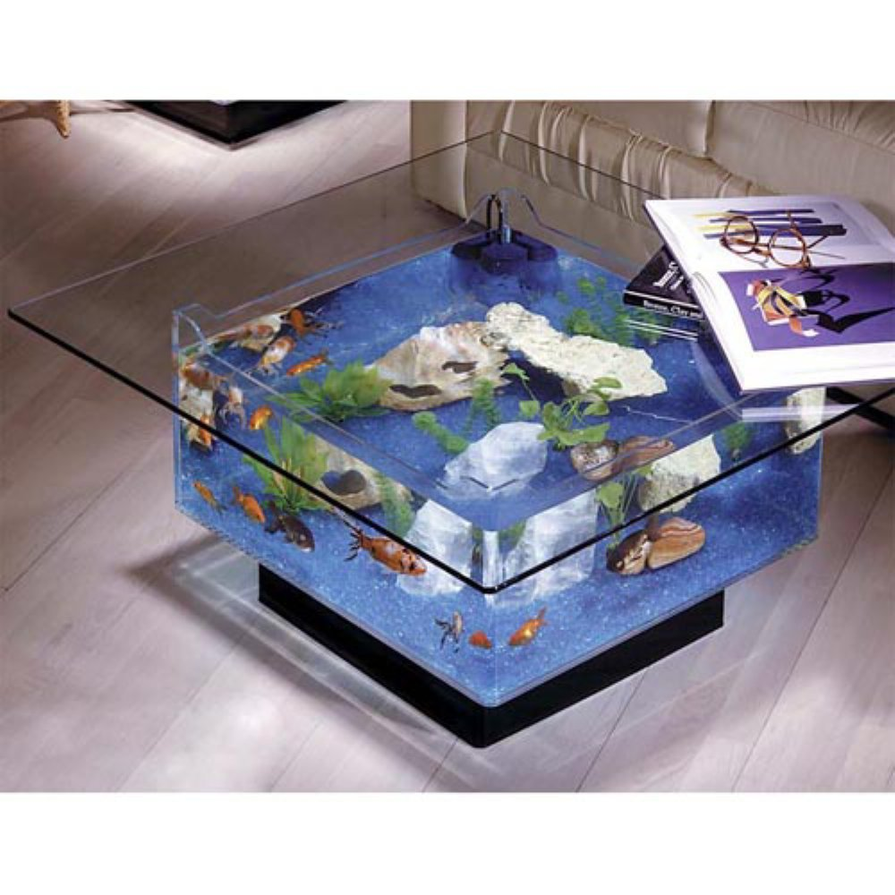 - Midwest Tropical Fountain 25 Gallon Aqua Coffee Table Aquarium Tank - Buy  Online In Antigua And Barbuda. Midwest Tropical Fountain Products In  Antigua And Barbuda - See Prices, Reviews And Free