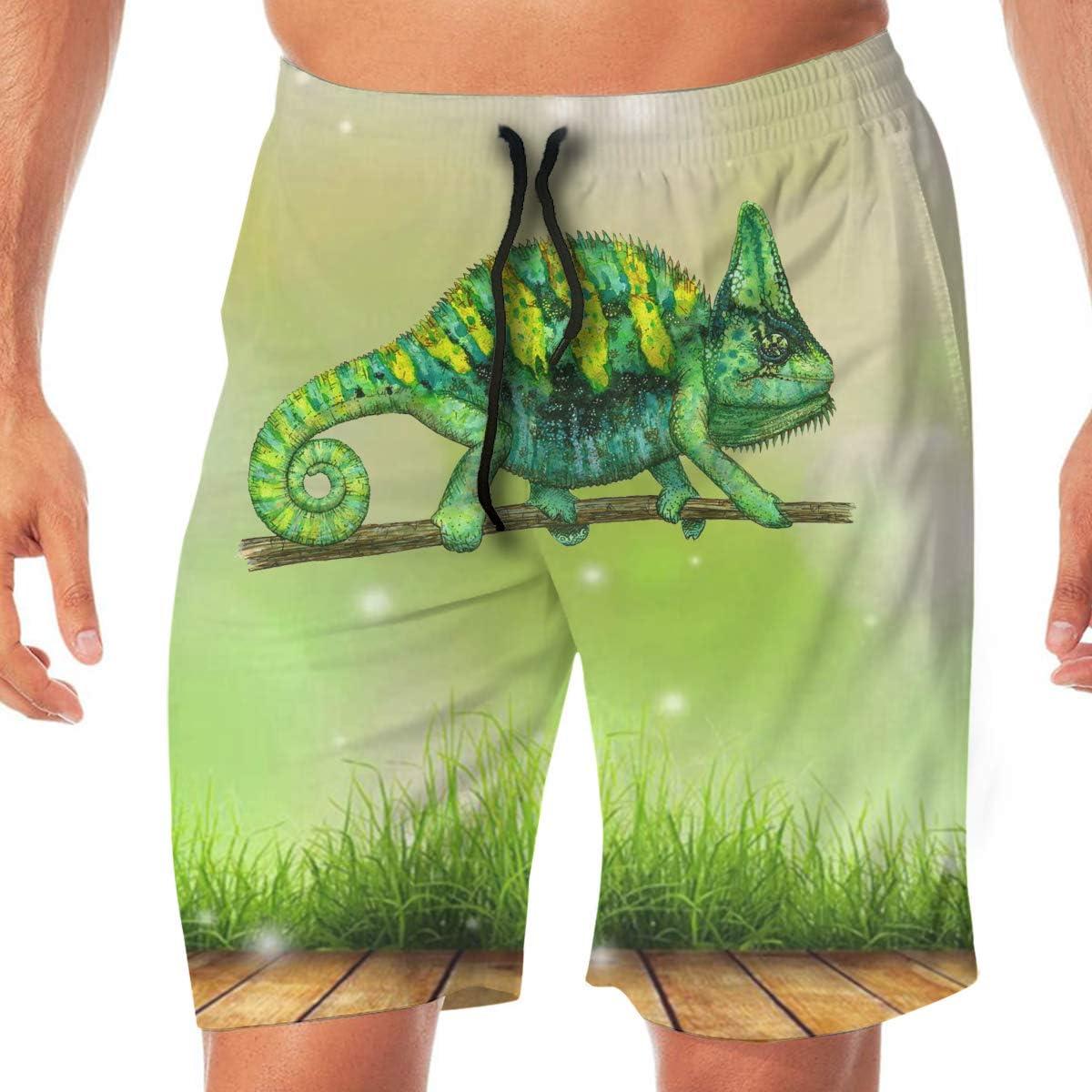 Chameleon Art Mens Classic Summer Boardshorts with Pockets