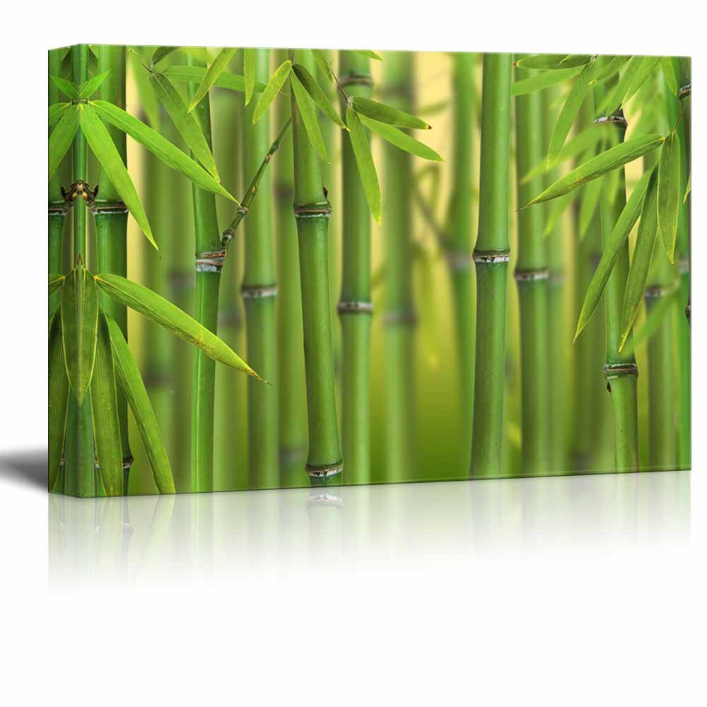 Bamboo Sprouts Forest Wall Decor Ation Canvas Art Wall26
