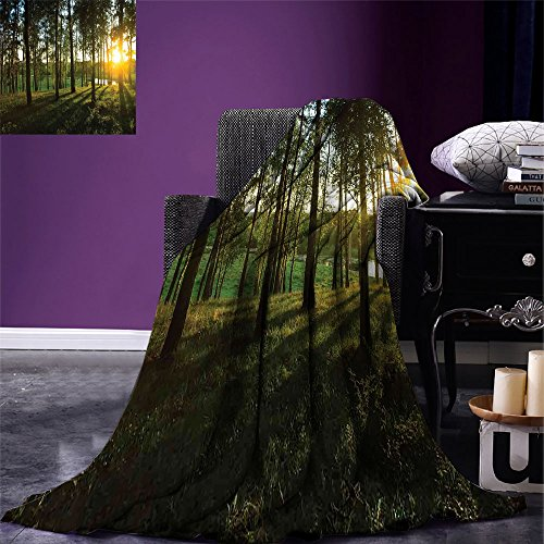 smallbeefly Forest Digital Printing Blanket Sunset in the Woods Theme Autumn and River Comes into View at Distances Summer Quilt Comforter Dark Green and Yellow by smallbeefly (Image #6)