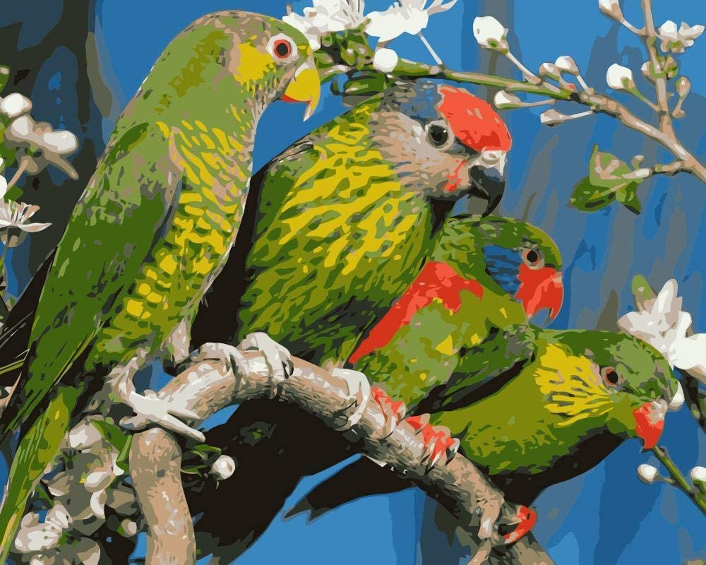 Zupjl Painting DIY Oil Painting by Numbers Parrot Hand Painted Canvas Modern Wall Picture Home Decoration Animal 40X50Cm S192