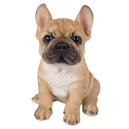 Amazoncom Adorable French Bulldog Puppy Statue Glass Eyes Frenchie