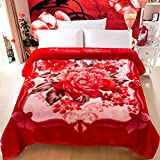 BEIZLSS Modern minimalist style floral flowers/scratched Double layer thickened blankets polyester-I 220240cm (87x94cm)