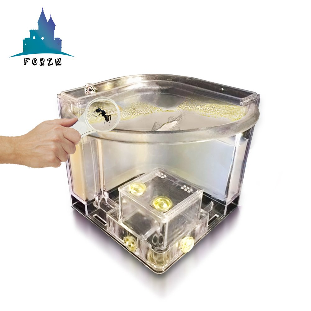 Forin Ant Nursery Castle Farm Maze with Feeding System Live Ant Viewing Habitat (White)