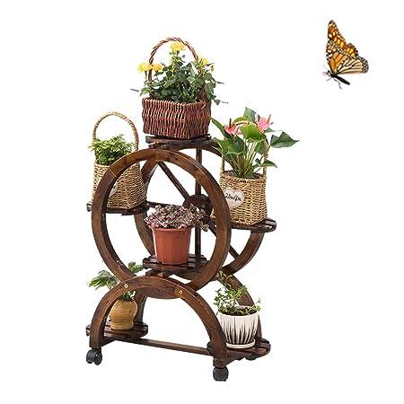 Bastidores de plantas, la población de plantas de madera, planta ...
