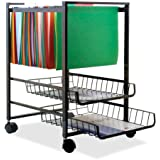 Advantus Mobile File Cart with 2 Sliding Baskets, 19.5 x 16 x 13 Inches, Black (34075)