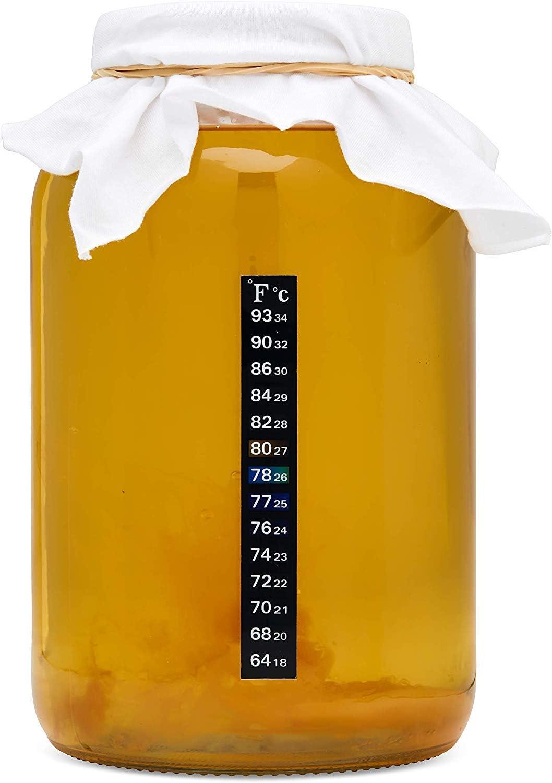 kitchentoolz Kombucha Starter Kit con Prima de Arranque SCOBY-envase de un galón de Cerveza y Tapa de plástico, Bolsas de té, Medidor de Temperatura, azúcar orgánica y Más