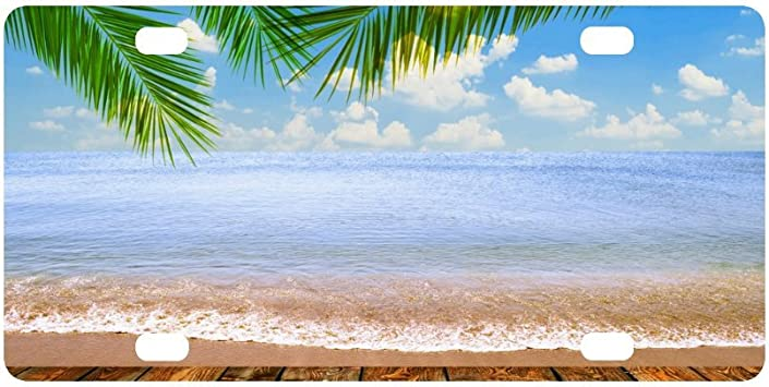 Tropical Paradise Ocean Beach Scene with Palm Trees Novelty License Plate Decorative Front Plate 6.1 X 11.8 Buy buy me