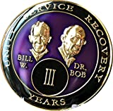3 year AA Medallion Purple Tri-Plate Founders Bill & Bob Chip III