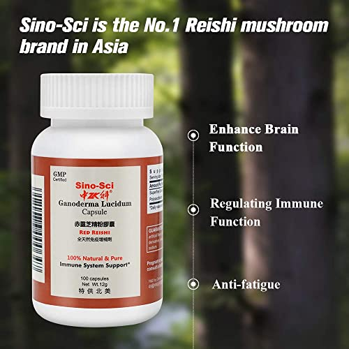 Sino-Sci Reishi Mushroom Capsules Immune System Booster, Energy Supplement, Sleeping Aid, Enhance Focus Improve Memory, 100 Counts