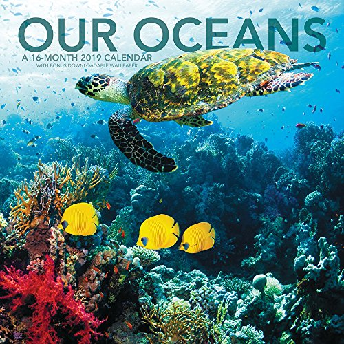 Our Oceans Wall Calendar (2019)