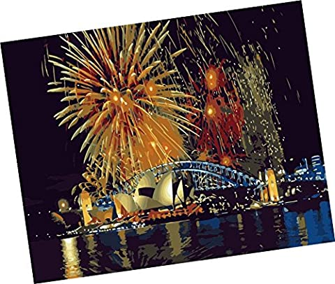 Wowdecor Paint by Numbers Kits for Adults Kids, Number Painting - Sydney Opera House Fireworks Dazzle Riverside Fireworks 16x20 inch (Dazzle For Xbox)