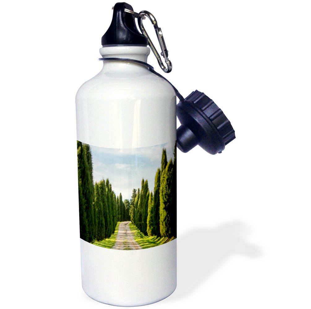 3dRose Danita Delimont - Roads - Italy, Tuscany, Long Driveway lined with Cypress trees - 21 oz Sports Water Bottle (wb_277692_1)