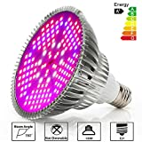 Best Led Grow Lights - Derlights 100W Full Spectrum LED Grow Light Bulb Review