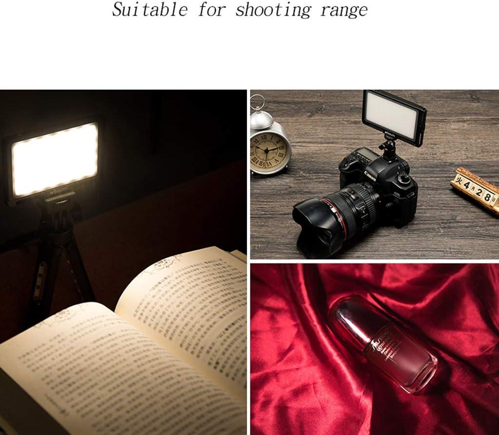 Color : Red Fill light ZHAOSHUNLI Camera Small Wedding SLR Camera Outside Shooting Portable Always Bright Soft Light