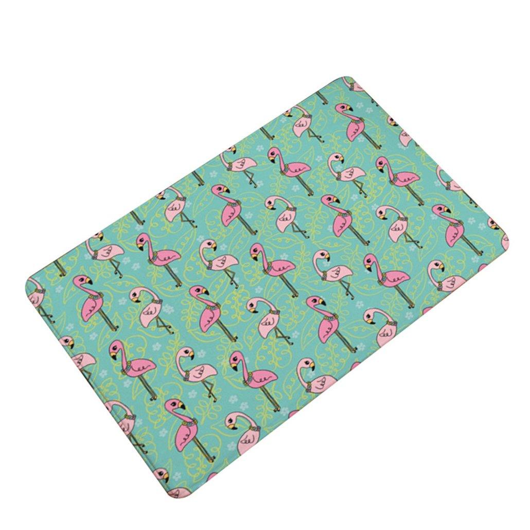 beiguoxia Flamingo Impression d'eau absorbant anti-dérapant Tapis de sol de salle de bain Chambre à coucher Tapis