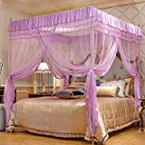 Purple four corner mesh bed canopy mosquito net, Stainless steel Bracket Floor standing Court Square top Double mosquito-curtain-A Queen1