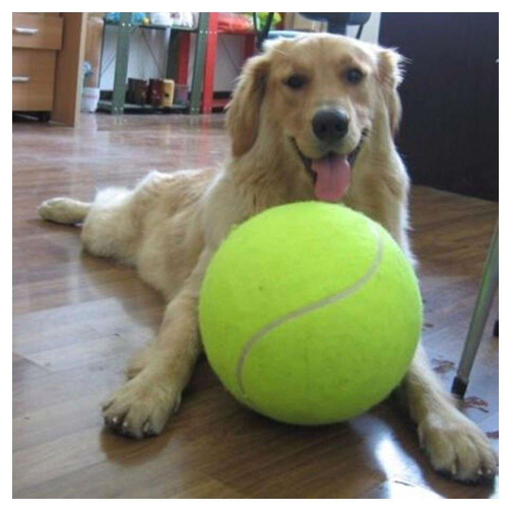 New Big Giant Pet Puppy Tennis Ball Thrower Chucker Launcher Play Toy