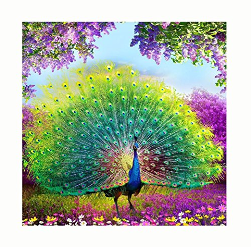 DEESEE(TM) DIY Diamond 5D Embroidery Paintings Rhinestone Pasted diy Christmas painting Cross Stitch (A(4040CM))