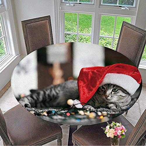Mikihome Chateau Easy-Care Cloth Tablecloth Beautiful cat Near Christmas Tree with Decoration for Home, Party, Wedding 31.5