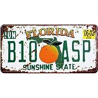 Eureya FLORIDA B10 ASP - Placa de matrícula