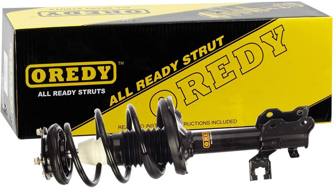 OREDY Front Driver /& Passenger Side Left /& Right Complete Shock Strut Coil Springs Assembly Kit 11575 11576 Replacement for 2000 2001 Sentra 4CYL Sedan FWD