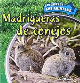 madrigueras de conejos inside rabbit burrows las casas de los rh amazon com