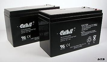 CASIL 2 12V 7AH CA1270 7Ah Sterling H7-12, H 7-: Amazon ...