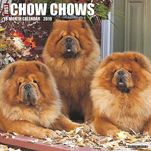 Just Chow Chows 2019 Wall Calendar (Dog Breed Calendar)