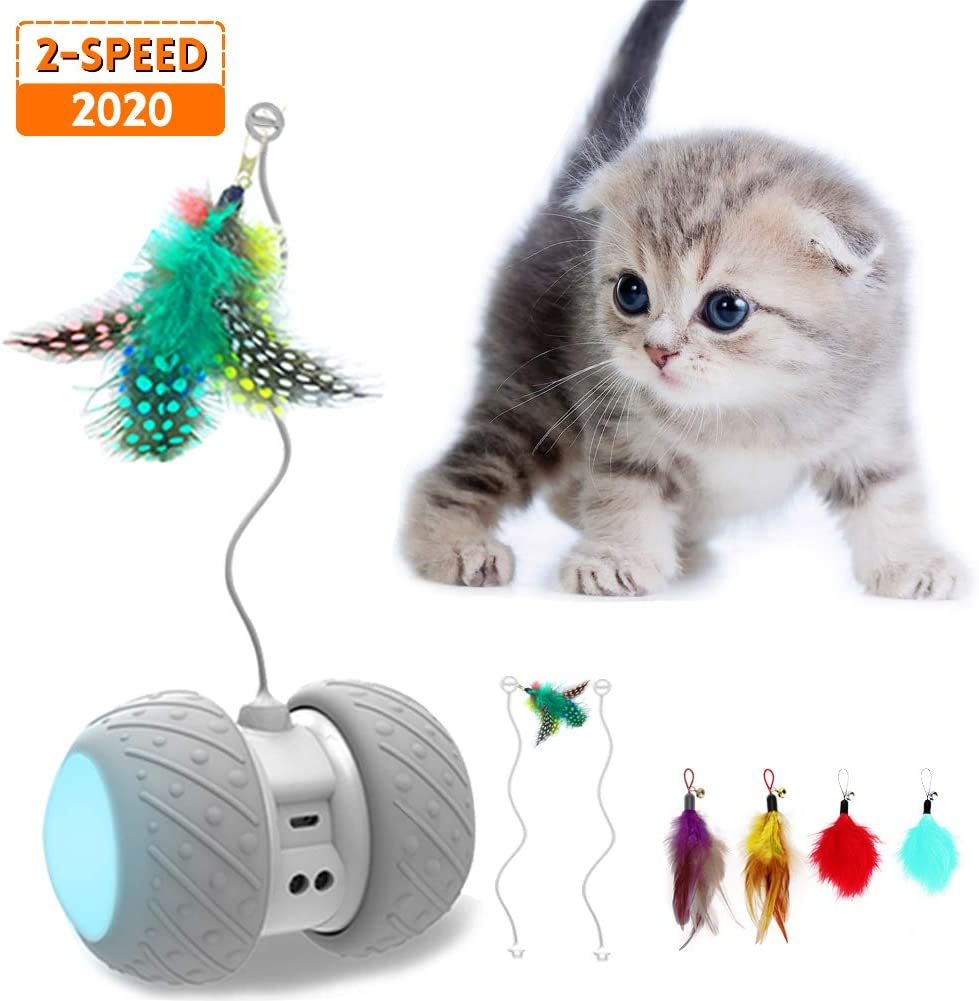 5. MalsiPree Robotic Interactive Cat Toy