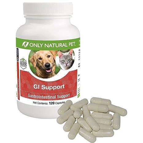 Amazon.com: Sólo Naturales Pet GI Apoyo, Digestivo Apoyo ...