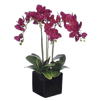Amazon house of silk flowers artificial dark purple triple stem house of silk flowers artificial dark purple triple stem phalaenopsis orchid arrangement mightylinksfo