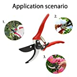 Erya Hedge Tree Trimmers Secateurs, Hand Pruner and Lopper, 8 inches Professional Bypass Pruning Shears Clippers of Garden with Safety Lock