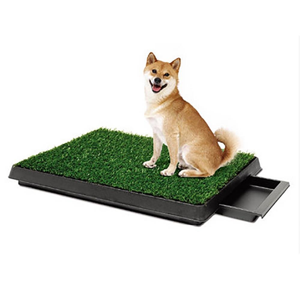 DAN Easy Dog Potty Training - Made with Synthetic Grass - 3 Layered System - Pan Tray