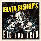 Elvin Bishop - Big Fun Trio