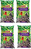 Kaytee RmrVMF Nut and Fruit Blend, 10 Pound Bag (4 Pack)