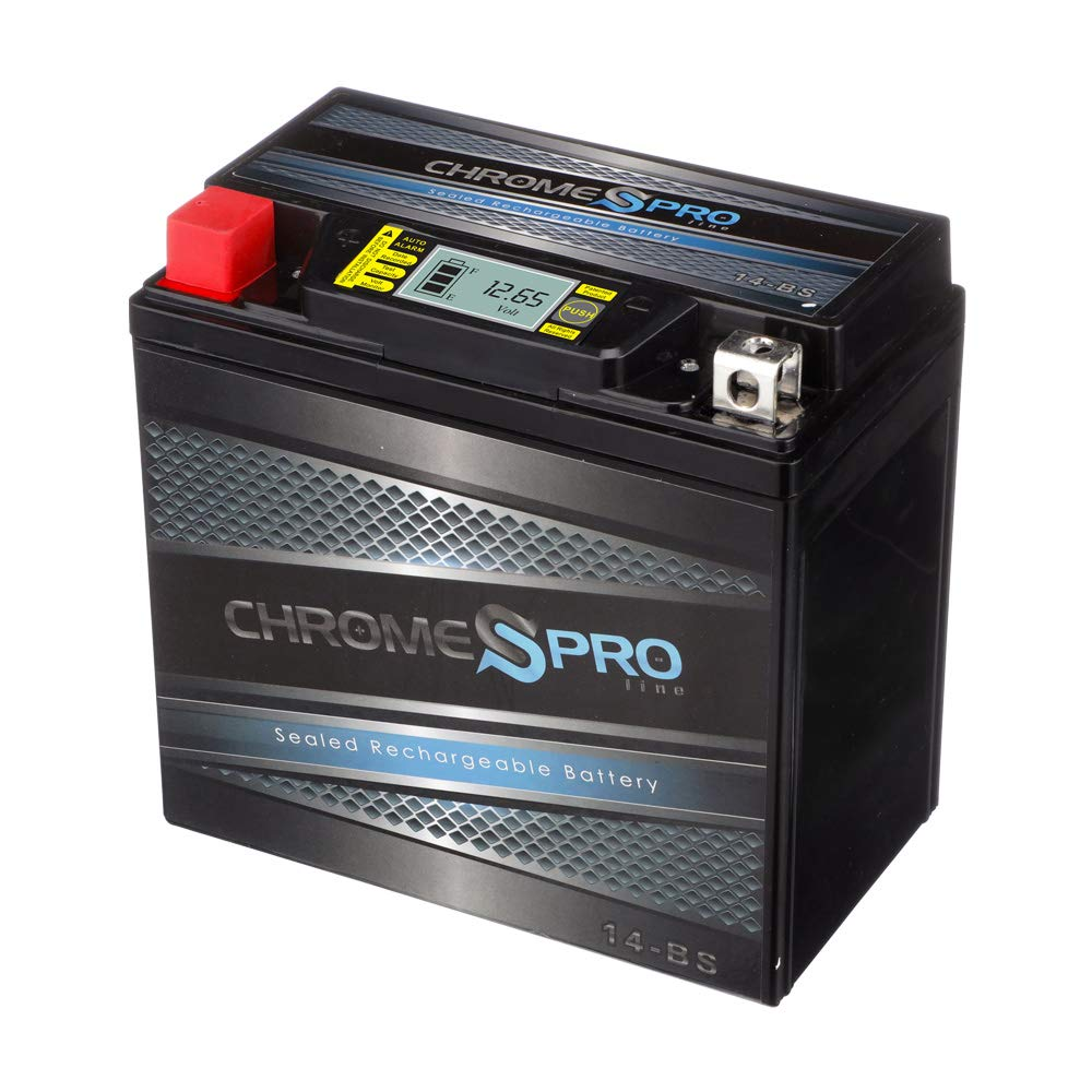 Overall best in value is the Chrome Pro YTX14-BS Motorcycle Battery