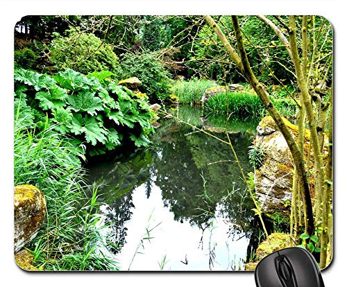 Secluded Pond - Mouse Pad - Chatsworth Gardens Plants Pond Secluded Water