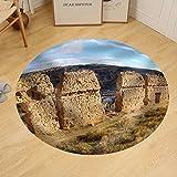 Gzhihine Custom round floor mat Image of Medieval Town Daroca Teruel Aragon Spain