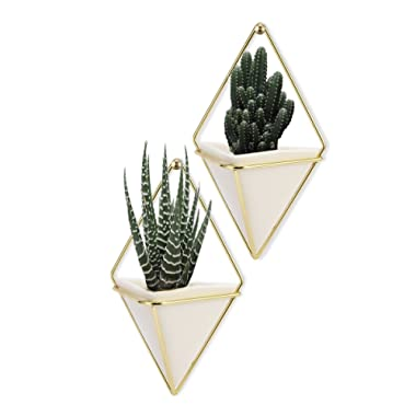 LANMU Hanging Container,Handcrafted Wall Vases,Geometric Wall Decor,Wall Vase Hanging,Plant Holder for Air Plants/Succulent Plants/Artificial Flowers/Mini Cactus/Geometric Plants (2 Pack)