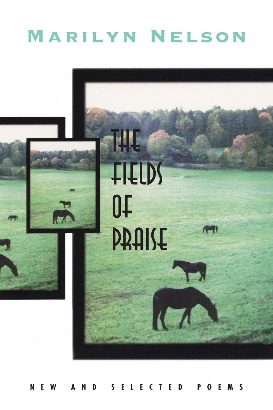 The Fields of Praise: New and Selected Poems: Marilyn Nelson